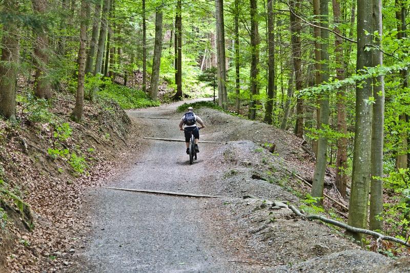 Zürich Wanderung Uetliberg Mountainbike