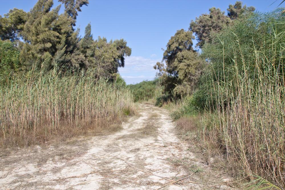 Salzsee Salzwüste Halbinsel Limassol Zypern