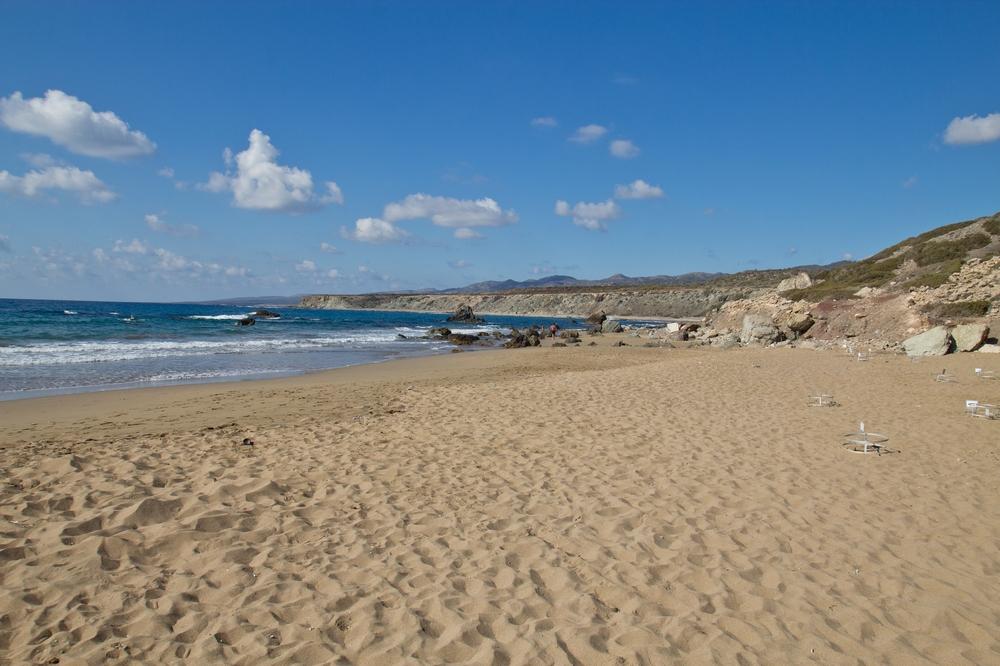 Lara Bay Zypern Schildkröten Meeresschildkröten Baby