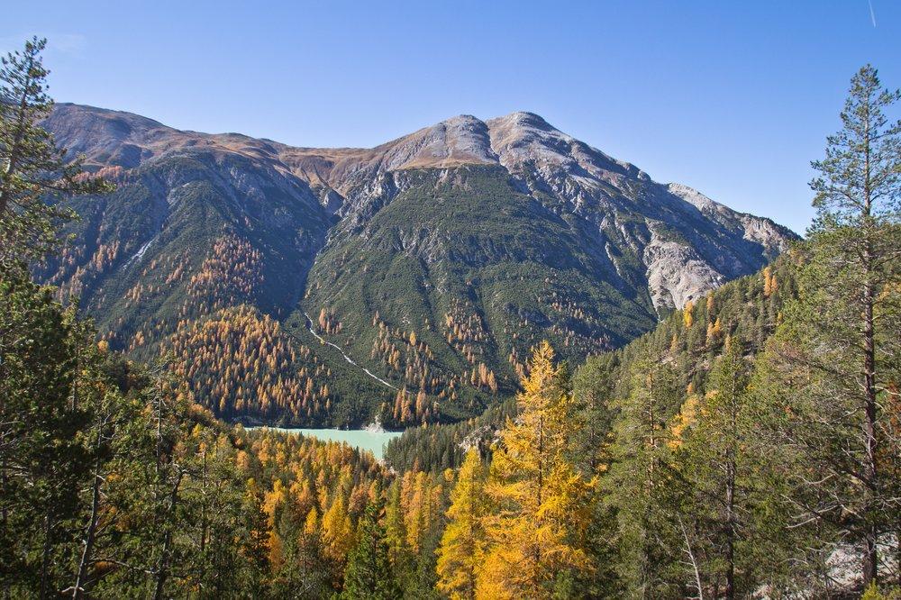 Schweizerischer Nationalpark Schweiz