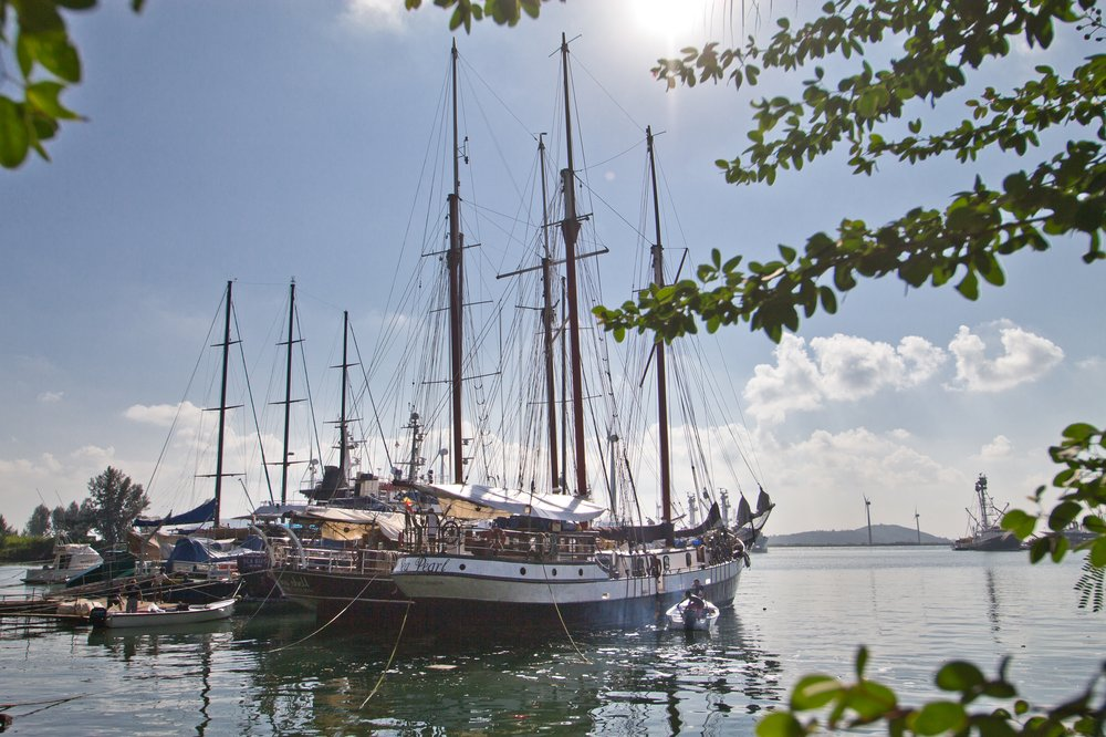 Sea Pearl Silhouette Cruises