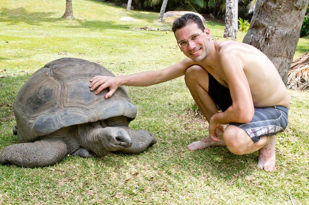 Schildkröte Grand Soeur Seychellen Kreuzfahrt