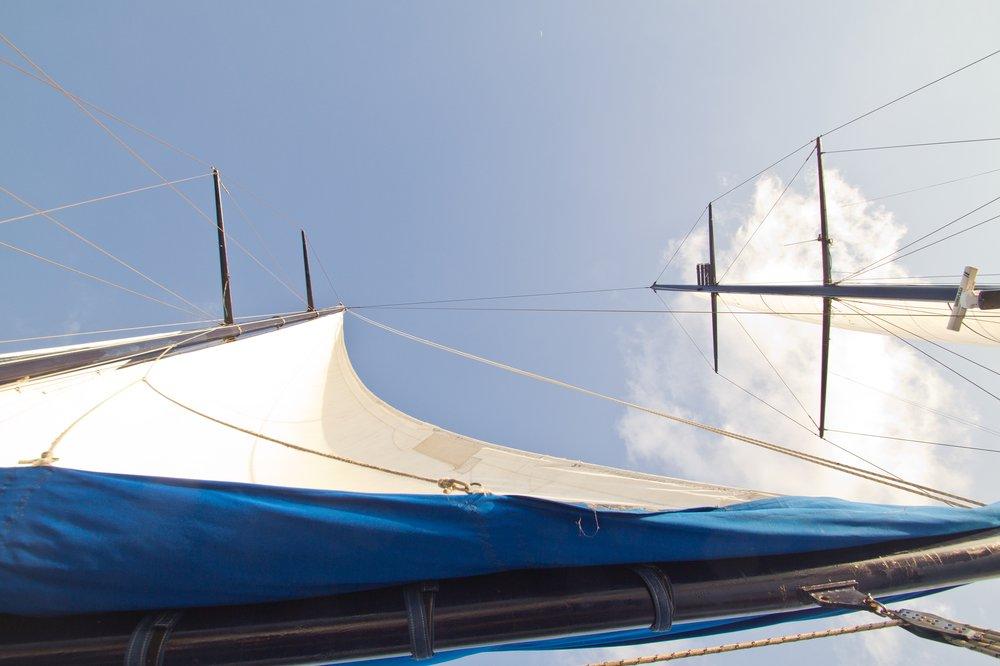 Sea Bird Silhouette Cruises Seychelles