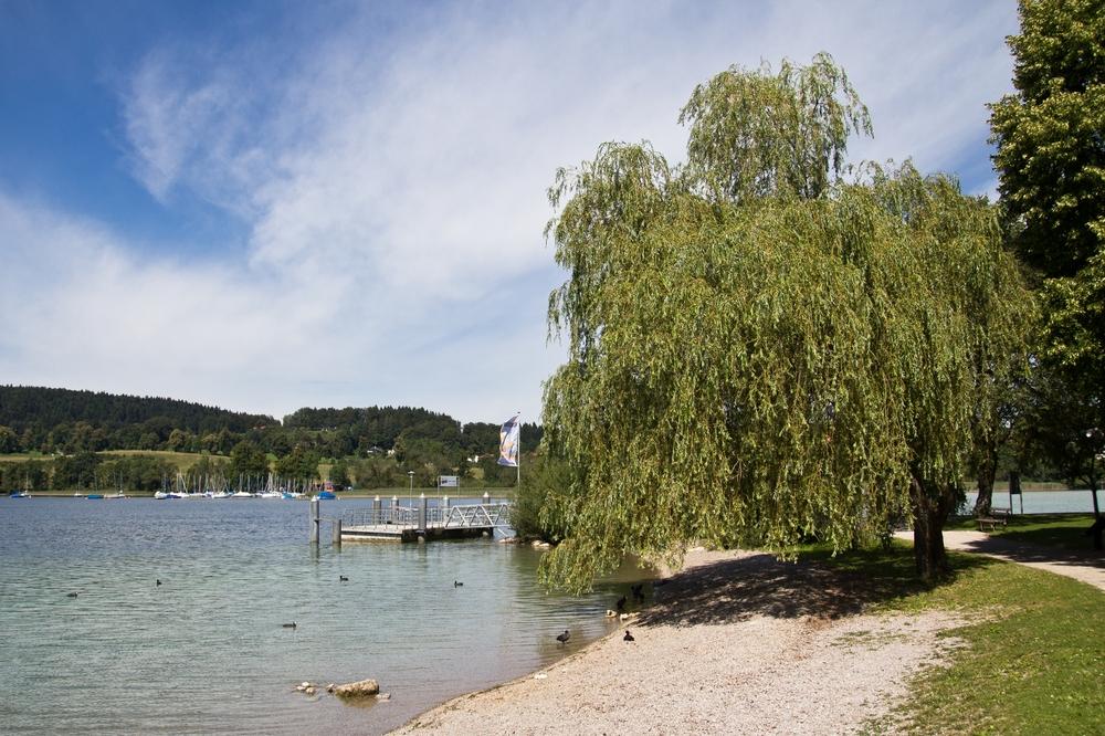 Ufer Tegernsee Gmund Baden Schwimmen