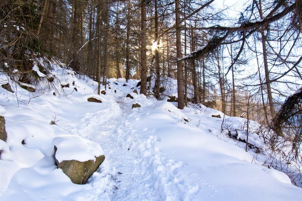 Sölden Wanderung Schlitten Rodeln Stallwiesalm